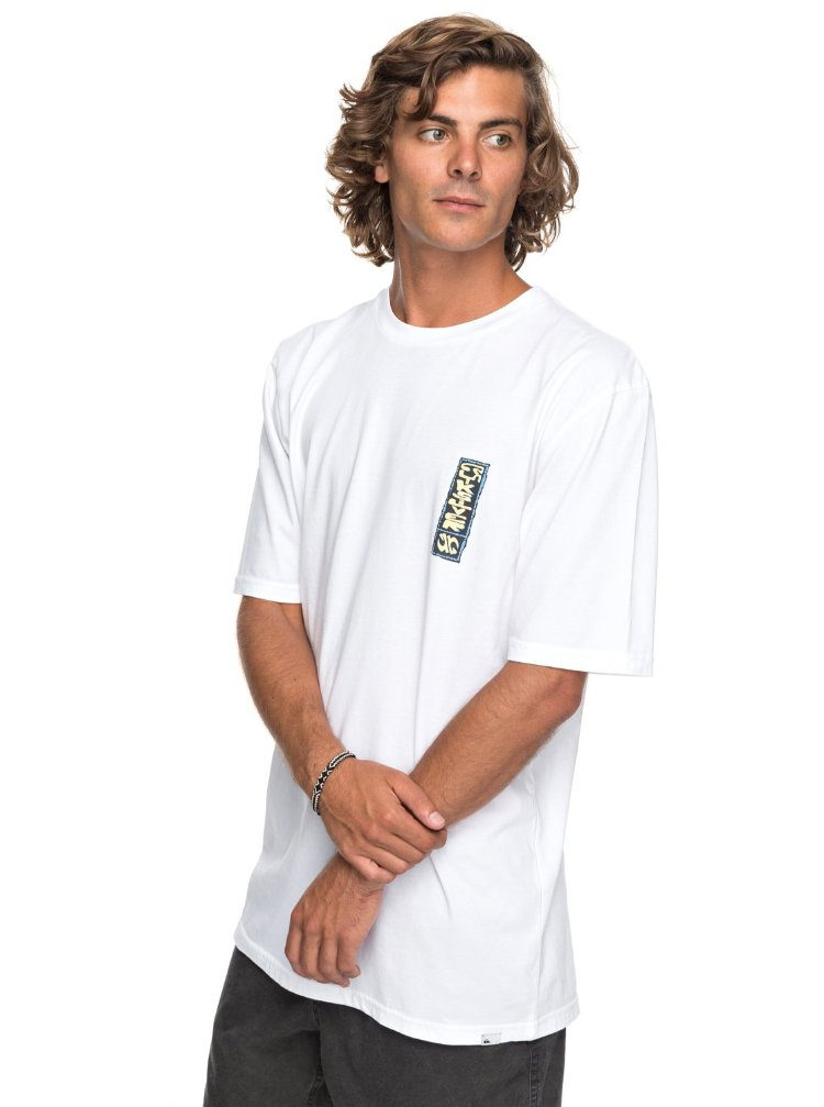 Купить Футболка мужская QUIKSILVER Gmtdyeframersup M White, Индия