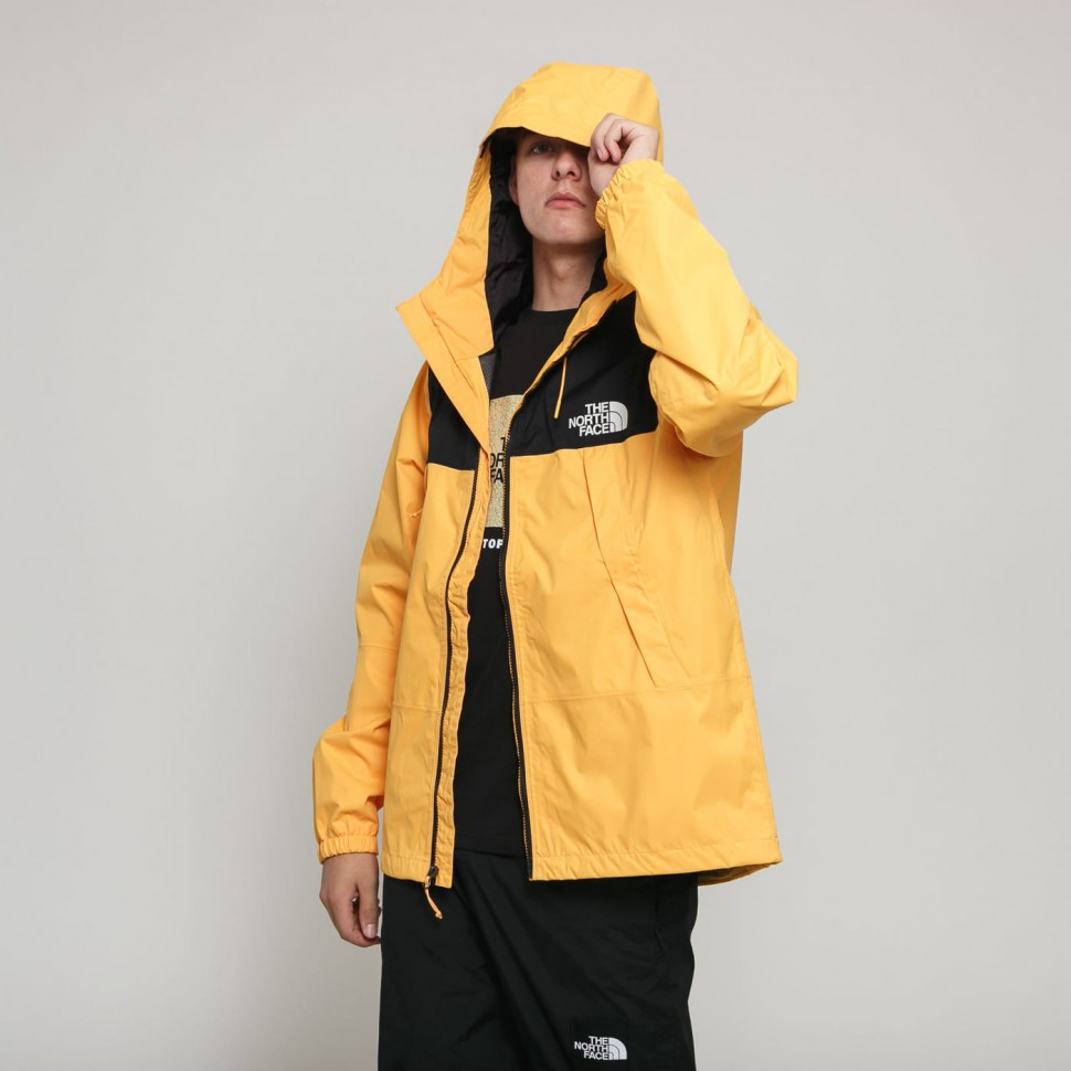 Куртка THE NORTH FACE M 1990 Mnt Q Jkt Tnf Yellow 2020 фото
