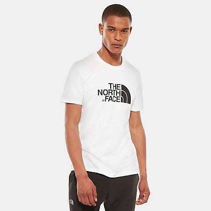 Футболка мужская THE NORTH FACE M S/S Easy Tee