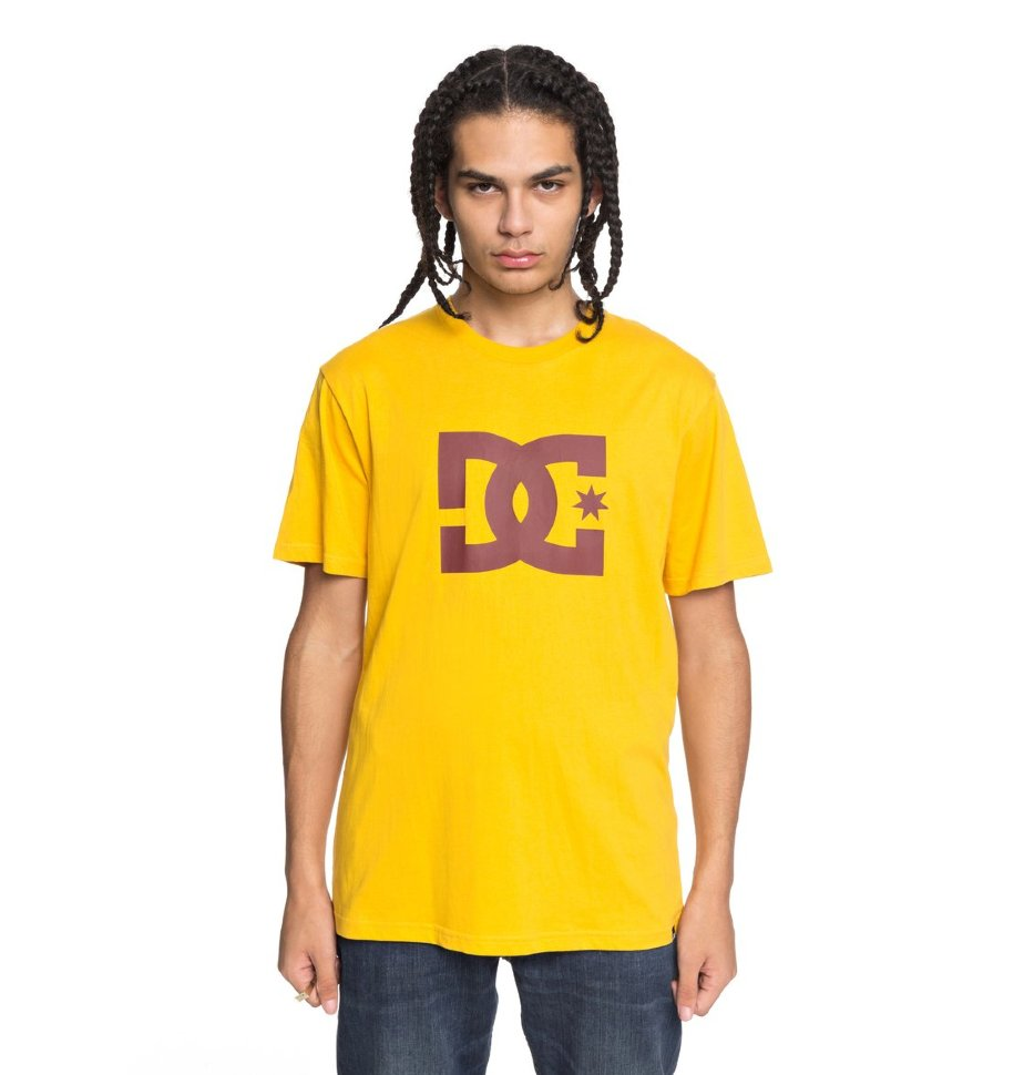 Купить со скидкой Футболка мужская DC SHOES Star Ss M Old Gold/ Fired Brick